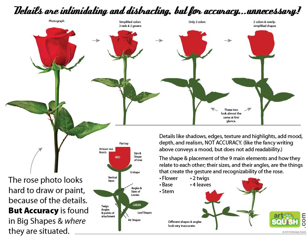 rose anatomy diagram wiring diagram schema img Rose Structure rose flower anatomy 2465611 togelmaya info rose parts diagram rose anatomy diagram